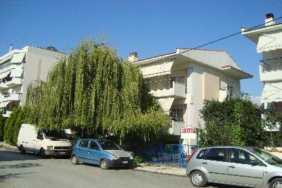 Недвижимость на Салоники . Вилла площадью 180 кв.м.