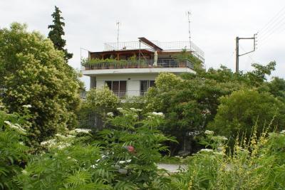 Недвижимость на Аспровалта . Квартира площадью 50 кв.м.
