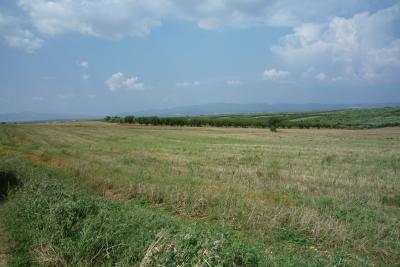 Недвижимость на Халкидики Кассандра. Участок за городом площадью 5500 кв.м.