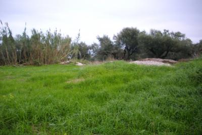 Недвижимость на о.Закинфос . Участок за городом площадью 995 кв.м.