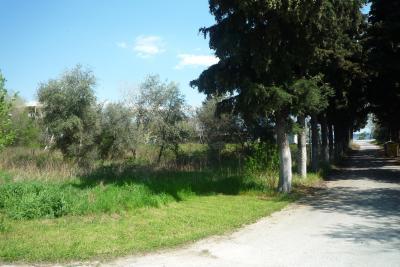 Недвижимость на Аспровалта . Участок за городом площадью 460 кв.м.