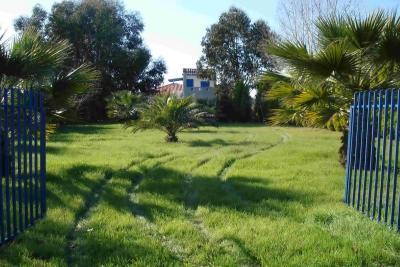 Недвижимость на Халкидики Кассандра. Участок за городом площадью 1000 кв.м.